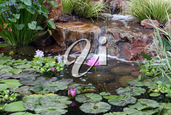 Royalty Free Photo of a Pond