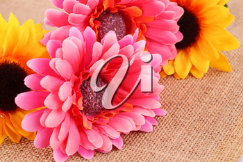 Colorful fabric daisies on canvas background, closeup picture.