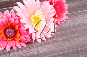 Pink fabric daisies on wooden background.