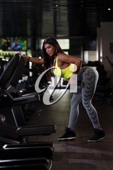 Sexy Mexican Woman Working Out Back With Dumbell In Fitness Center