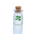 Sealed glass bottle holding single four leaf clover isolated on white with reflection. Luck in bottle concept for St. Patrick Day.