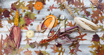Fading fall foliage with pumpkins, acorns, corn and gourds on rustic white wood