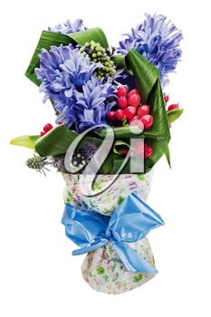 colorful bouquet from hyacinth arrangement centerpiece isolated on white background