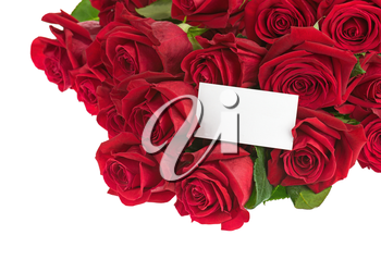 Flower Bouquet from Red Roses and Greeting Card with Place for Your Text Isolated on White Background. Closeup.