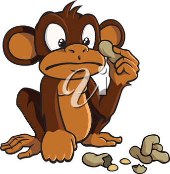 Royalty Free Clipart Image of a Monkey with peanuts