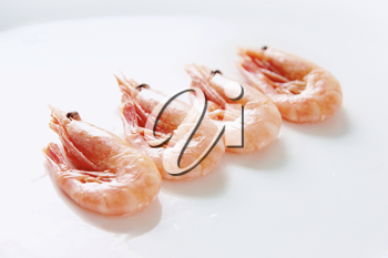 Image of tasty shrimps lying in row over white background