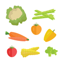Set of vegetables vector. Flat design. Carrot, tomato, pepper, paprika, corn, broccoli, asparagus cauliflower illustrations for conceptual banners icons infographics. Isolated on white background.