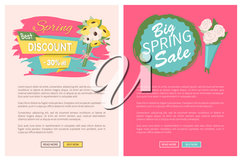 Sale, discount and best offer, label for springtime promotion and advertising, daisy bouquet. Advertisement decorated by flowers, greeting for ladies vector. Website with links buy and read now