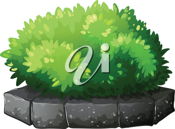 Illustration of a plant above a stone on a white background