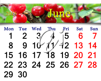 calendar for June of 2015 year with fruits of red berries of Prunus tomentosa