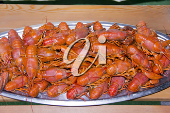 Red boiled crawfishes on the table in oval dish