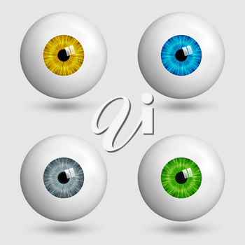 set of realistic eyes with different colors of irises. vector illustration - eps 10