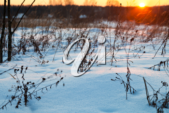 sunset under blue winter snowdrifts on country field