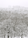 above view of snow forest and urban houses in winter snowfall