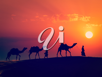 Vintage retro effect filtered hipster style image of  Rajasthan travel - two indian cameleers camel drivers with camels silhouettes in dunes of Thar desert on sunset. Jaisalmer, Rajasthan, India