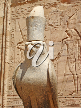 The statue of the falcon-god in the Egyptian Temple of Horus in Edfu.