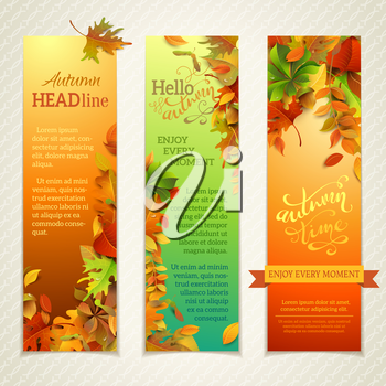 Three design templates. Fall maple, oak, birch, elm, rowan, chestnut, aspen leaves and acorns on bright background.  Hand-written lettering elements. There are places for your text.
