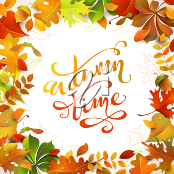 Bright colourful autumn leaves on white background. You can place your text in the center.