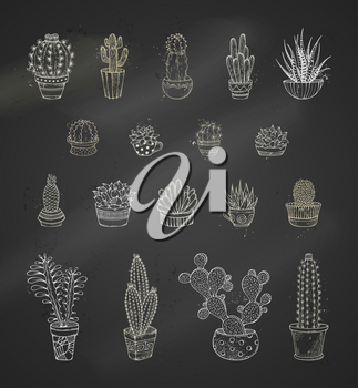 Various cacti with prickles and flowers in flower pots or cups. Hand-drawn icon set.