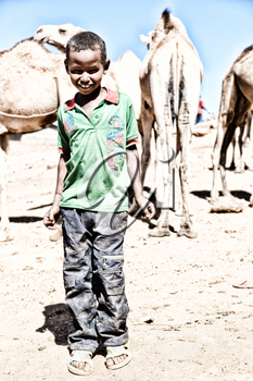 ETHIOPIA,BABILE-CIRCA  JANUARY 2018--unidentified   worker young boy in the camels market