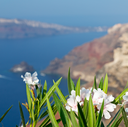 in    europe    vacation     cyclades santorini old town white and the sky