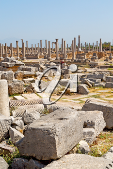 stone     in  perge construction asia turkey and  roman temple