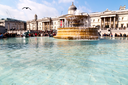 in london england trafalgar square and the    old water  fountain