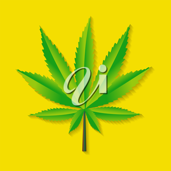 Abstract Cannabis on Background Vector Illustration EPS10