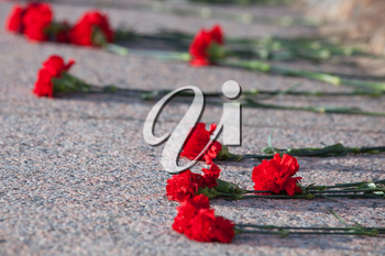 Red carnations lie on granite slab of monument to soldiers