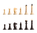 Set of chess figures isolated on white background