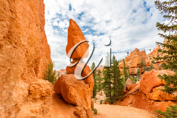 Scenic landscape stones at Bryce Canyon National Park, Utah USA