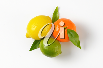 lemon, lime and tangerine on white background