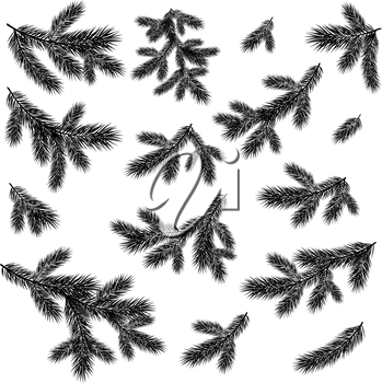 Christmas spruce tree branches set black silhouettes isolated on white background. Vector
