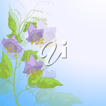 Flowers kobe, lilac petals and green leaves on background of blue sky, vector eps10, contains transparencies