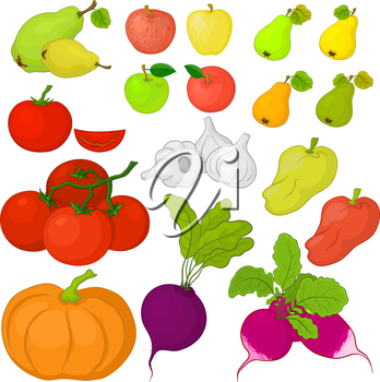 Set various vegetables and fruits on white background. Vector