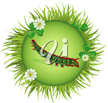 Insect and summer nature icon. caterpillar  in a clearing in a circle around flowers