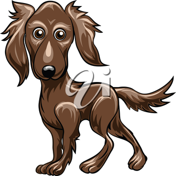 Funny illustration with retriever drawn in cartoon style