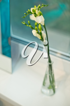 Bouquet lying in curtains on a window sill.