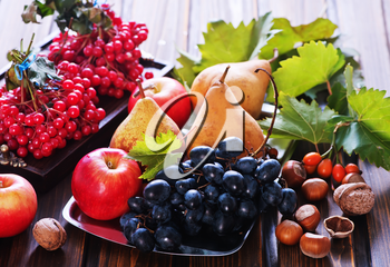 autumn fruits on the wooden table, apples and grape