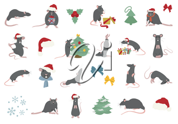 Different rats christmas collection. Rat poses and exercises. Cute cartoon new year clipart set. Vector illustration
