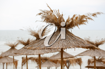 Straw beach umbrellas on a background of the cloudless sky
