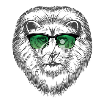Hand drawn lion in sunglasses isolated on white background. Hipster lion print design vector illustration