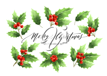 Christmas holly branches realistic illustrations set. Green holly twigs with red berries. Merry Christmas hand drawn lettering. Holiday decorative plant. Poster design elements. Isolated vector