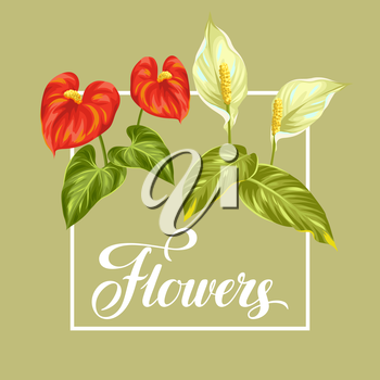 Greeting card with flowers spathiphyllum and anthurium.
