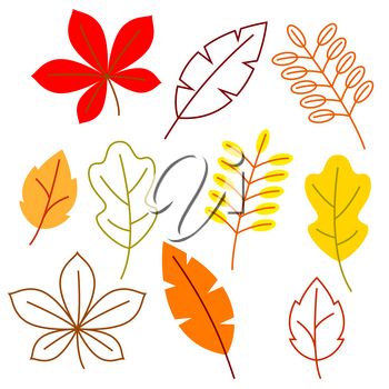Set of stylized autumn foliage. Falling leaves in simple style.