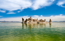 Calcium Carbonate towers called Tufa in the heavily salty or saline waters of Mono Lake in California