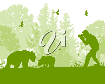 The man photographs bears in the forest. Wildlife protection and ecology concept. Vector illustration