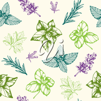 Vintage hand drawn seamless pattern with Provencal spices and herbs. Decorative floral vector background.