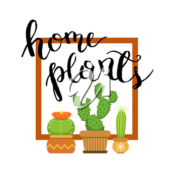 Banner with home green plant cactus. Cacti in frame. Vector illustration