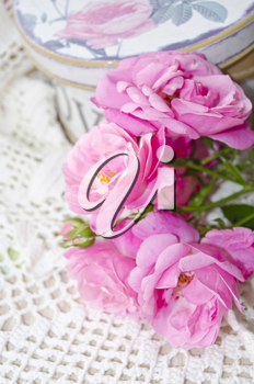 Beautiful floral card with love for you. Gentle wild pink roses with gift box.